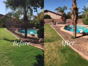 Fence Removal Before and After