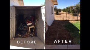 Before & After Shed Removal